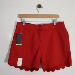 The Limited Scalloped Tailored Shorts 8